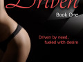 Driven Trilogy, Book 1: Driven